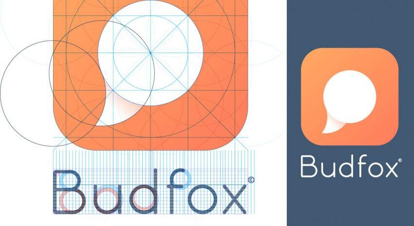Модульная сетка логотипа Budfox